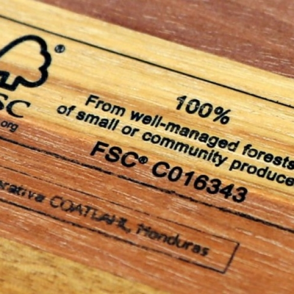 What is the FSC?