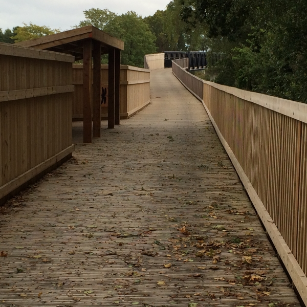 River Clyst Boardwalk