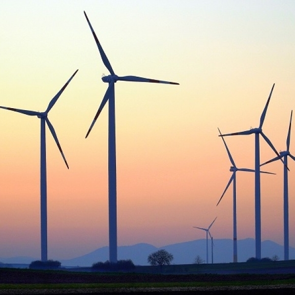 Does the future of wind power lie in timber?